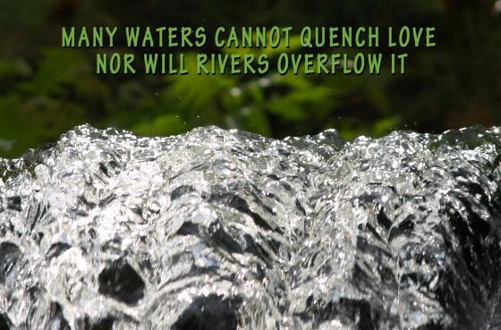 Many Waters - SoS header